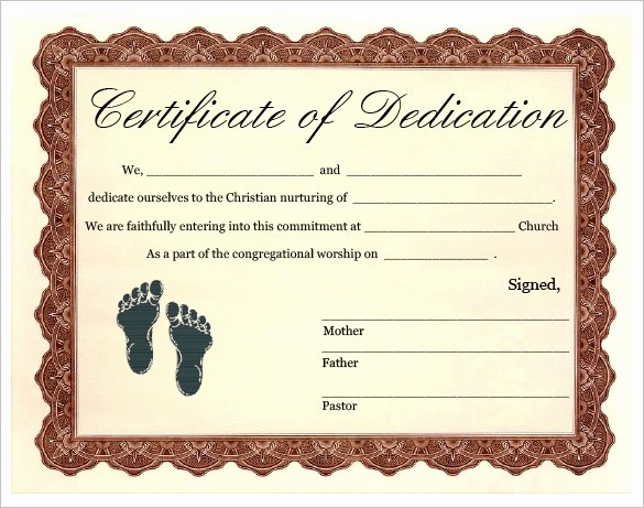 Baby Dedication Certificate Unique Baby Dedication Certificate Template 21 Free Word Pdf