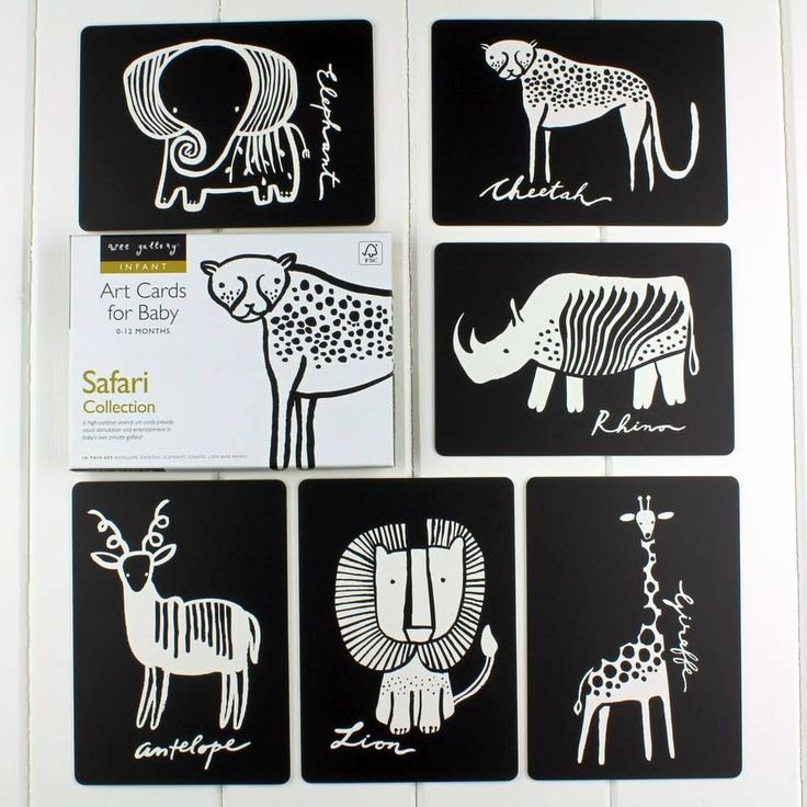 Baby Flash Cards Free Awesome Black and White Baby Flash Cards Safari Animals