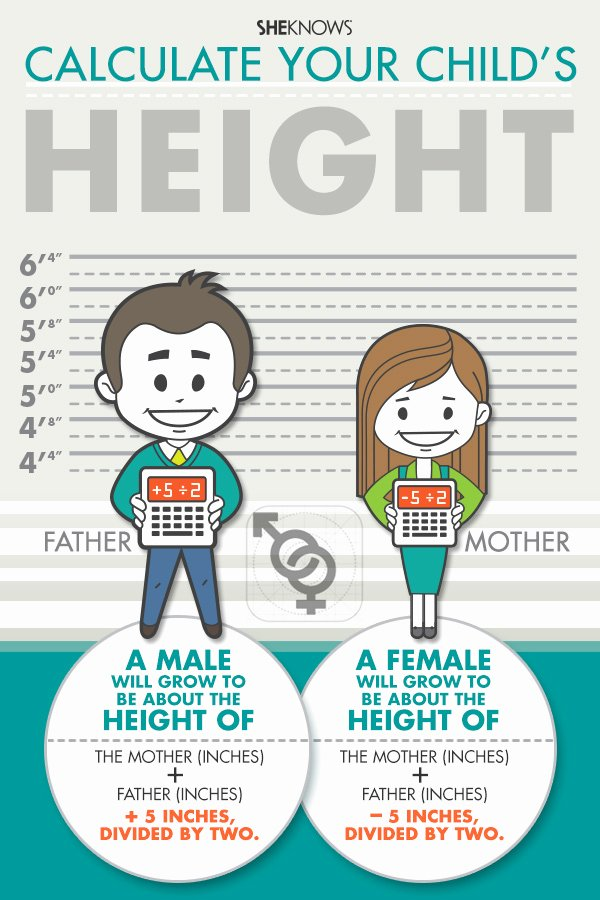 Baby Growth Rate Calculator Inspirational How Tall Will Your Child Be
