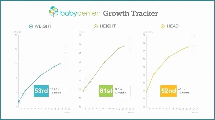 Baby Growth Rate Calculator Lovely Height Growth Chart for Boys Baby Girl Weight 0 to 12