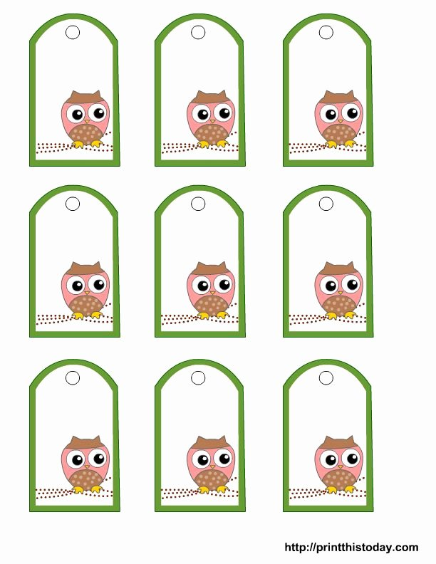 Baby Shower Gift Tag Template Inspirational Free Printable Owl Gift Tags Templates In Pink or Blue or