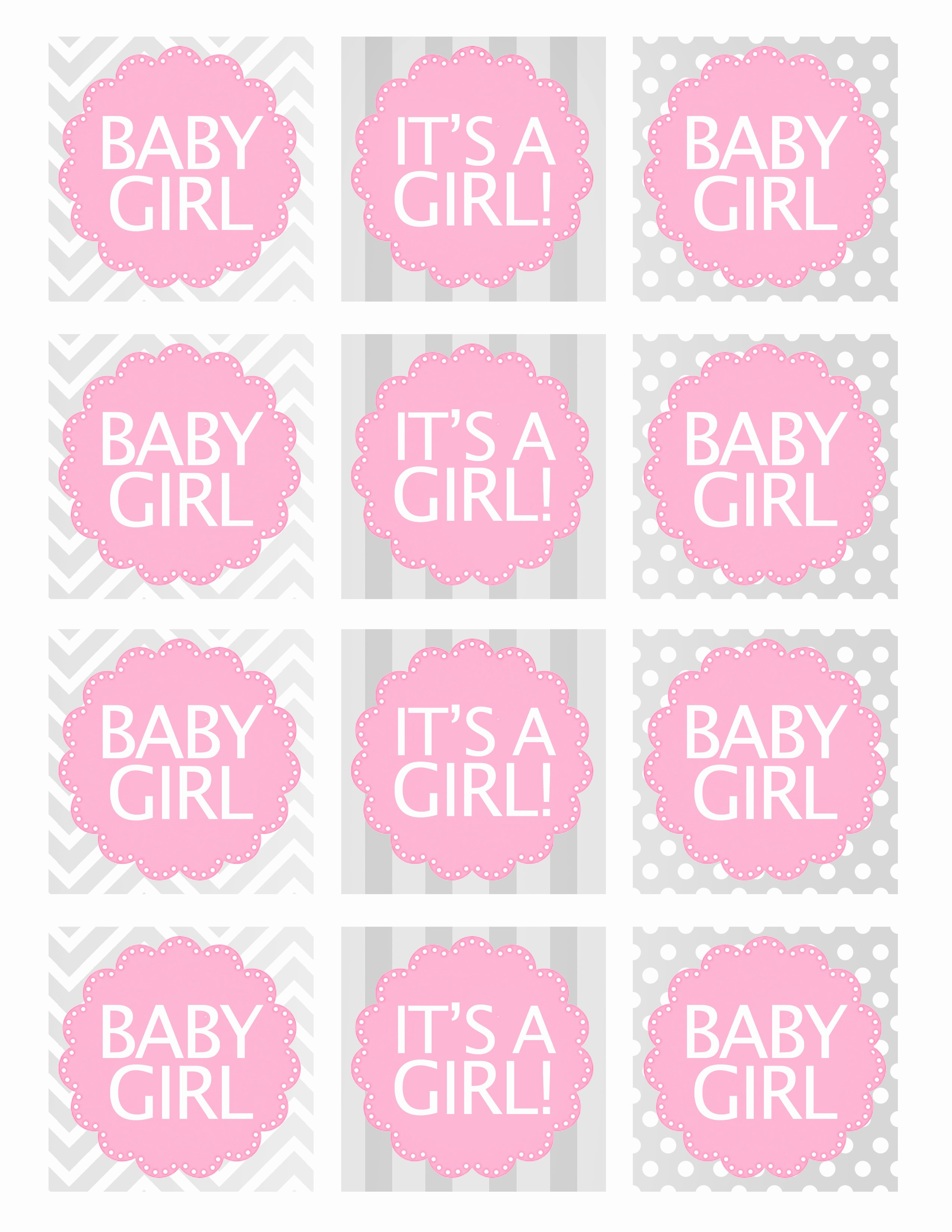 Baby Shower Gift Tag Template Unique Baby Girl Shower Free Printables How to Nest for Less™
