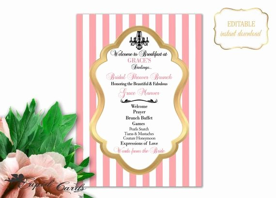 Baby Shower Program Template Beautiful Blush Bridal Shower Program Template Shower Brunch Invitation