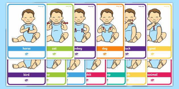 Baby Sign Language Posters Elegant New Baby Sign Language Poster Pack Animal Signs
