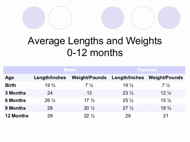 Baby Weight and Length Chart Awesome Human Development Chapter 7 Physical Development Of Infants