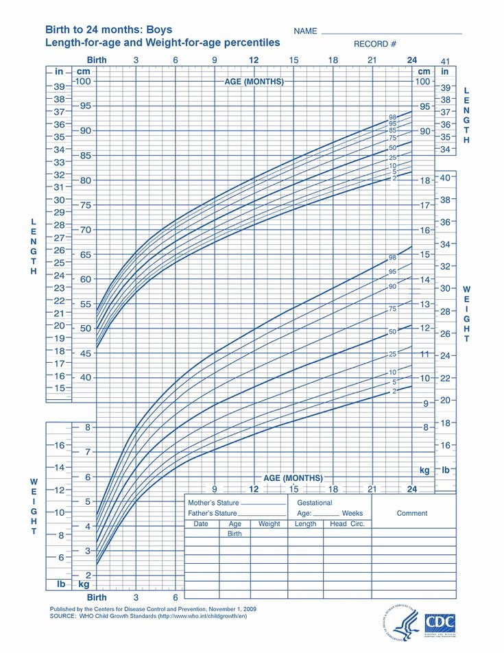 Baby Weight and Length Chart Elegant 7 Best Charts Images On Pinterest