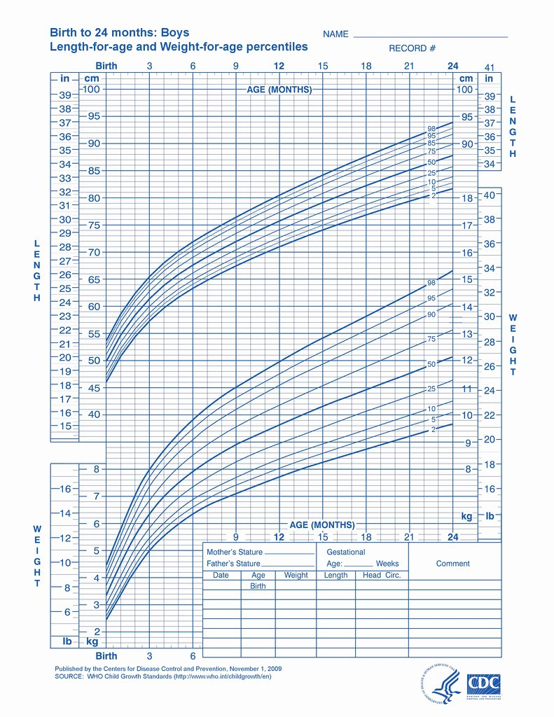 Baby Weight and Length Chart Inspirational Baby Growth Charts E Month Daddylibrary
