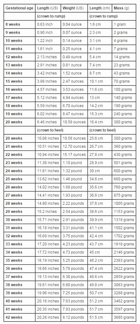 Baby Weight and Length Chart Inspirational Best 25 Baby Size Chart Ideas On Pinterest