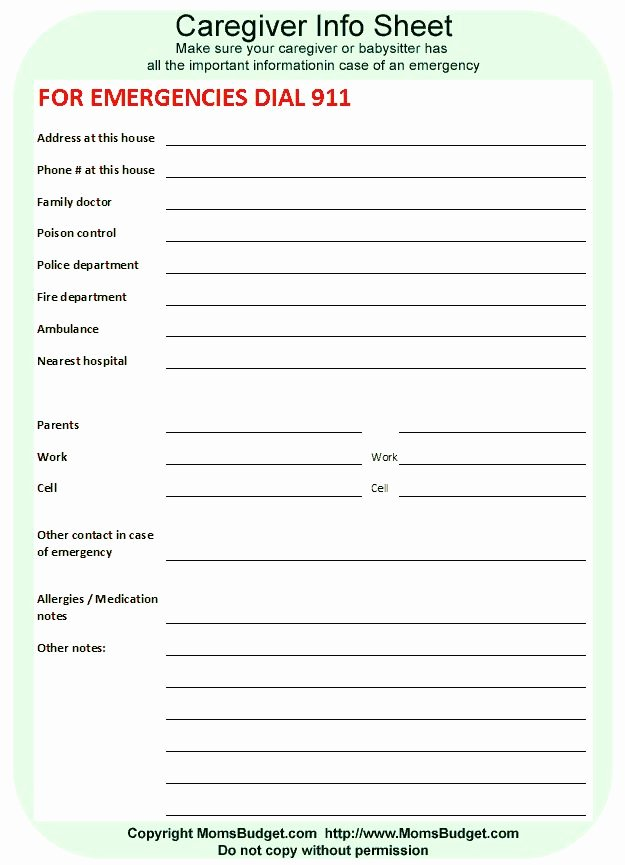 Babysitter Information Sheet Template Elegant 25 Unique Babysitter Printable Ideas On Pinterest