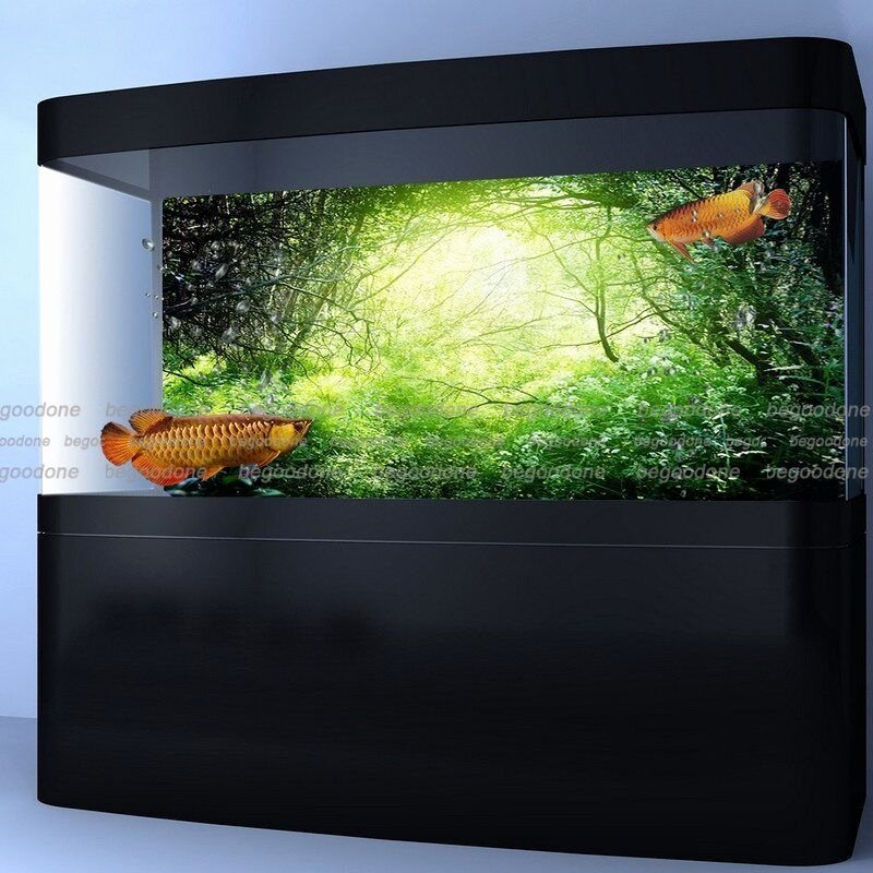 Background for Fish Tank Fresh Green Green forest Aquarium Poster Fish Tank Background Pp