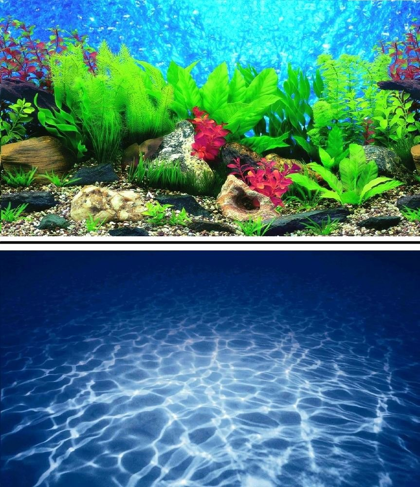 "Background for Fish Tank New 16"" Double Sided Aquarium Background Backdrop Fish Tank"