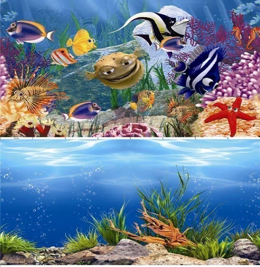 "Background for Fish Tank Unique 24"" Double Sided Aquarium Background Backdrop Fish Tank"
