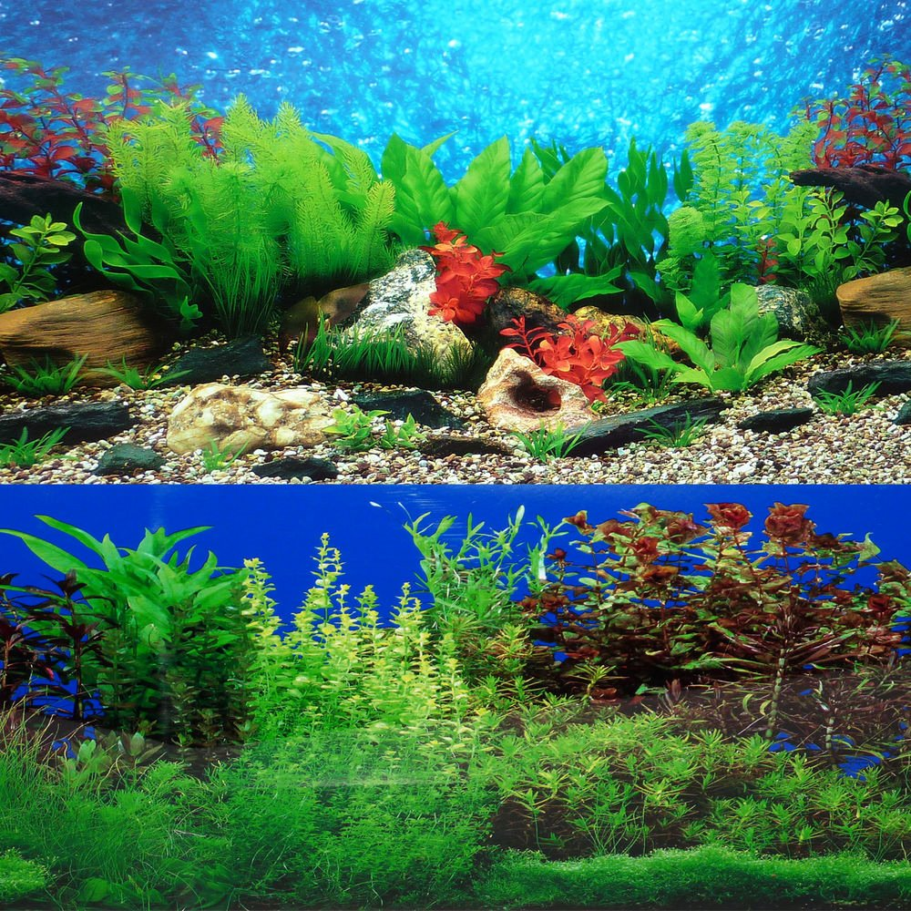 "Backgrounds for Fish Tanks Beautiful 9085 12"" X 48"" Fish Tank Background 2 Sided River Bed"