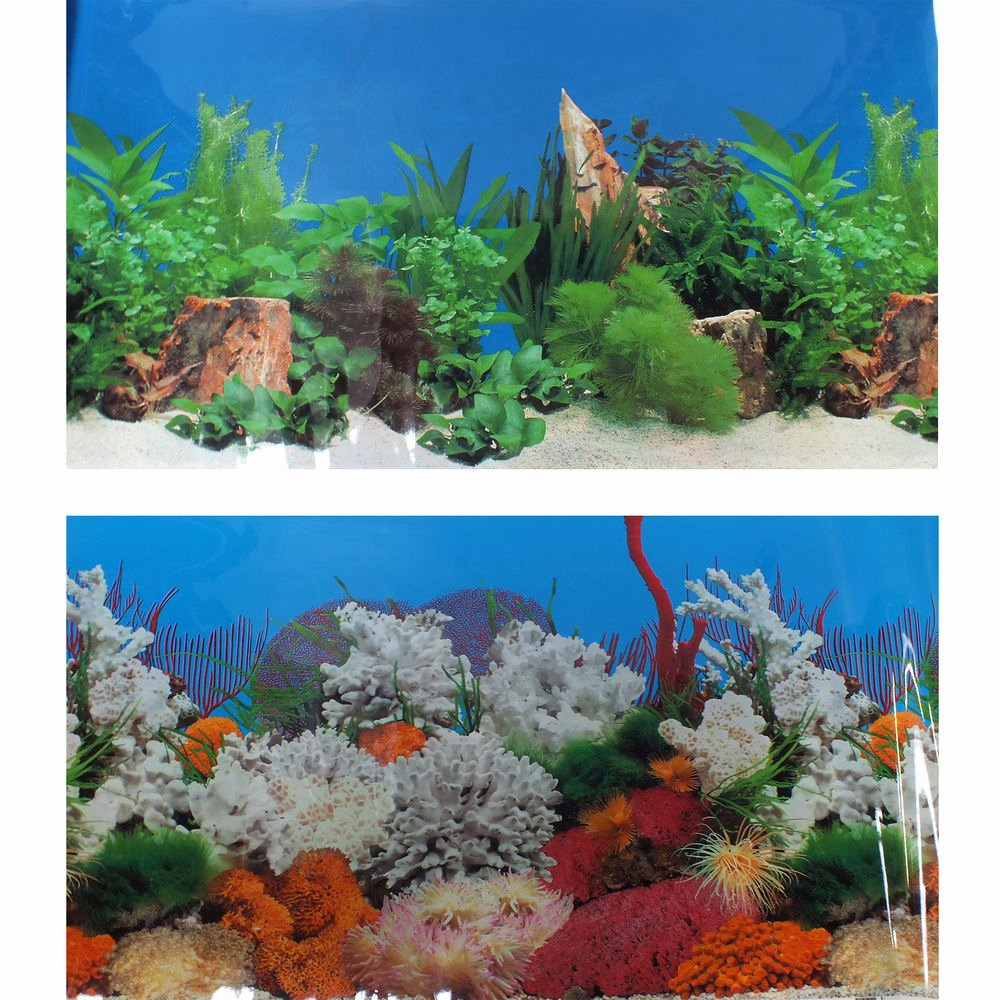 "Backgrounds for Fish Tanks Lovely 24"" 60cm Aquarium Marine Coral Freshwater Planted Fish"