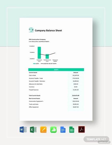 Balance Sheet Template Google Docs Inspirational 14 Pany Sheet Templates Free Sample Example format