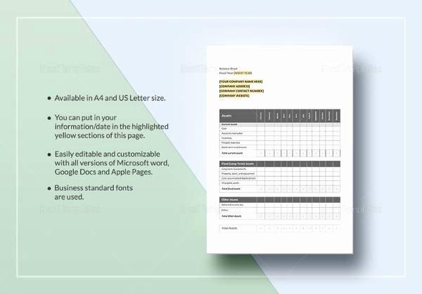 Balance Sheet Template Google Docs Inspirational Sample Balance Sheet 20 Documents In Word Pdf Excel