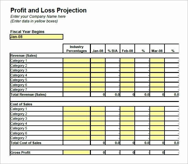 Balance Sheet Template Google Docs Luxury Free 21 Sample Profit and Loss Templates In Google Docs