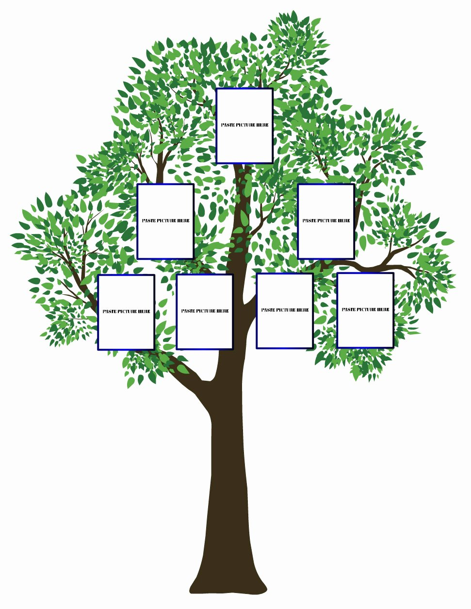 Basic Family Tree Template Beautiful Simple Family Tree Template Clipart Best