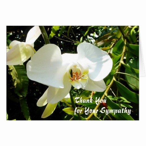 Bereavement Thank You Letter New Writing Condolence Thank You Notes
