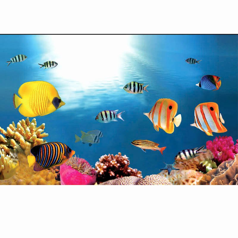 Best Fish Tank Background Beautiful [usd 18 43] Custom Made Aquarium Background Paper Fish