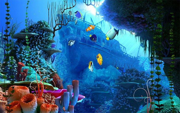Best Fish Tank Background Best Of 50 Best Aquarium Backgrounds