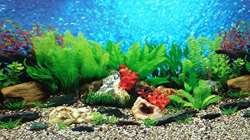 9088 20 x 48 fish tank background 2 sided river bed lake background aquarium reviews list best deals