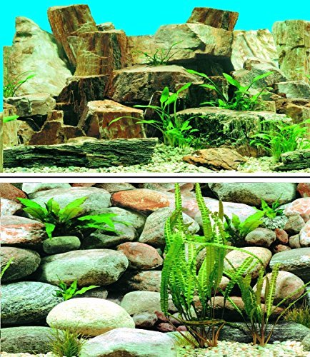 Best Fish Tank Background Lovely Best Fish Tank Background Review Aquarist Club