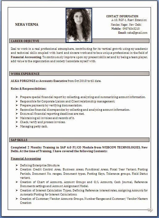 Best Resume format Lovely Best Cv Samples