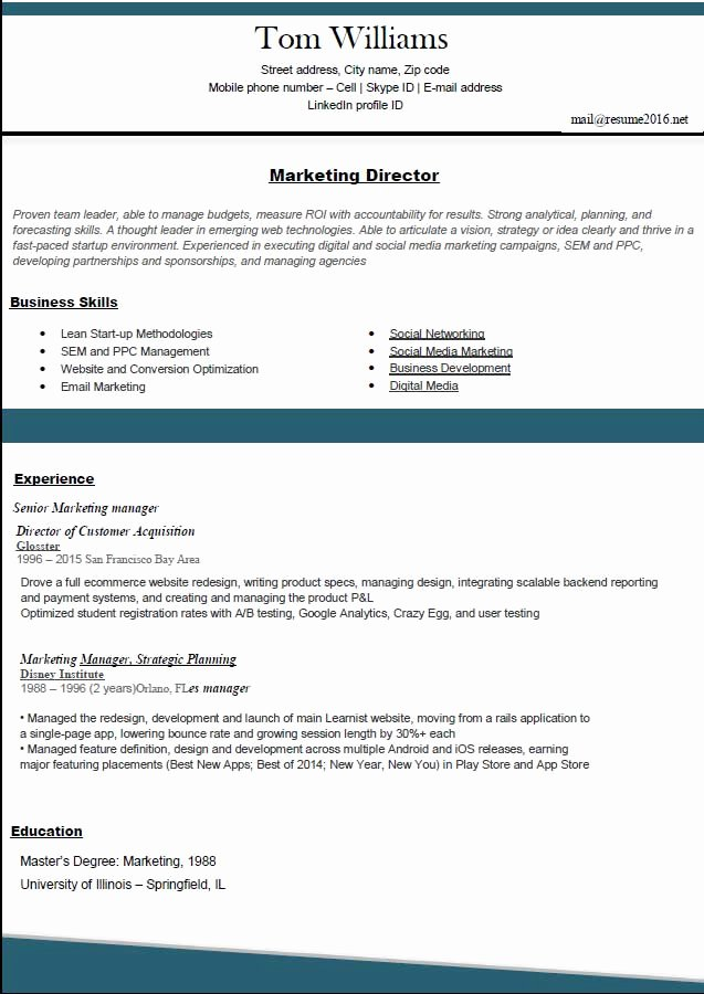 Best Resume format Unique Resume Template 2016