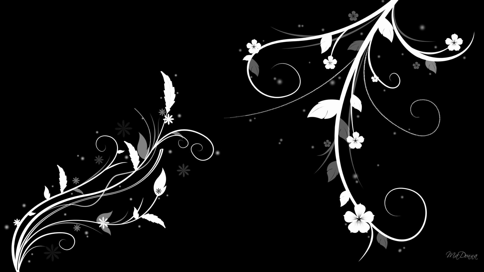 Black and White Abstract Pictures Awesome Black & White Floral Wallpapers