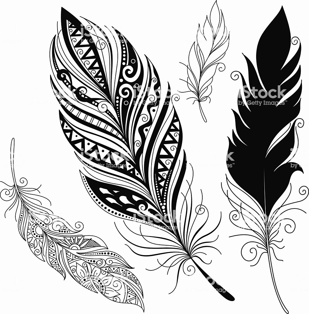Black and White Designs Art Inspirational A Feather Pattern In Black and White Designs Stock Vector