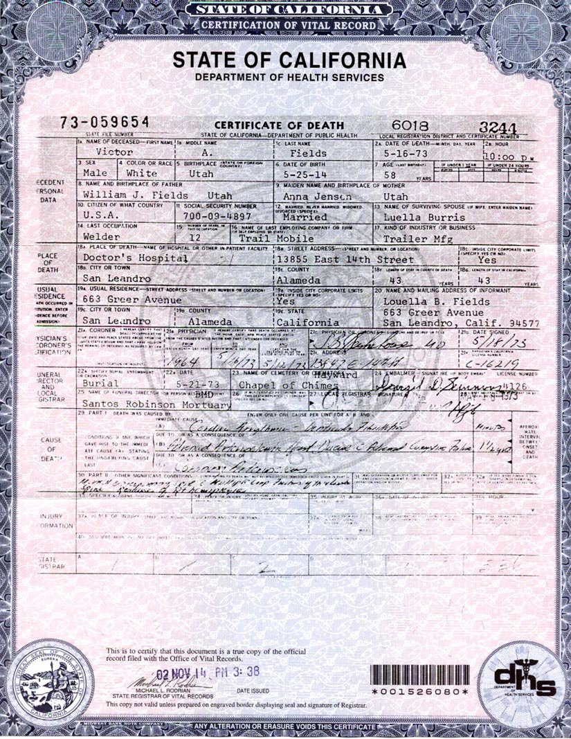 Blank Death Certificate form Elegant Making A Point – Part 3