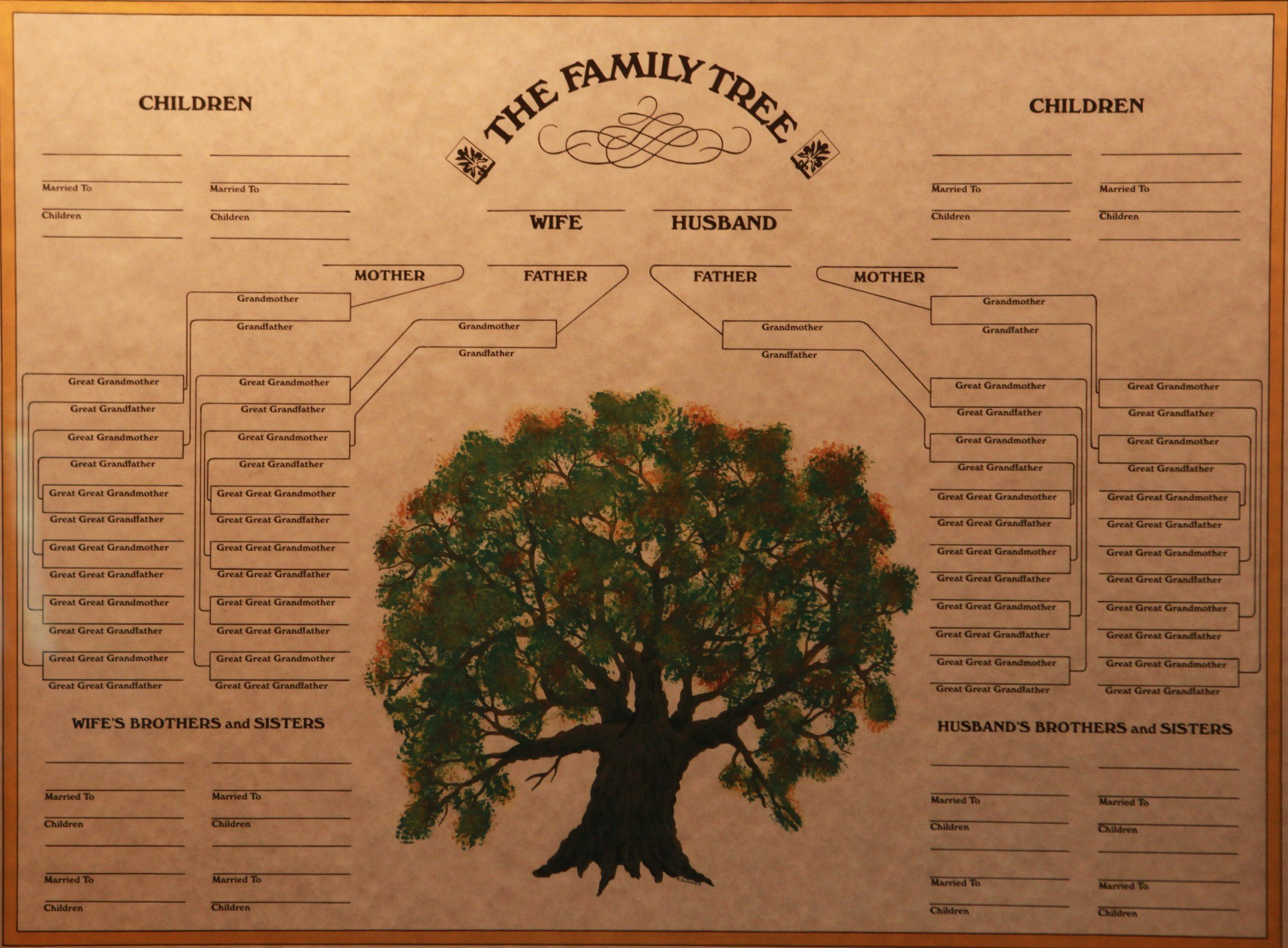 Blank Family Tree Poster Awesome Family Tree Certificate Museum Store