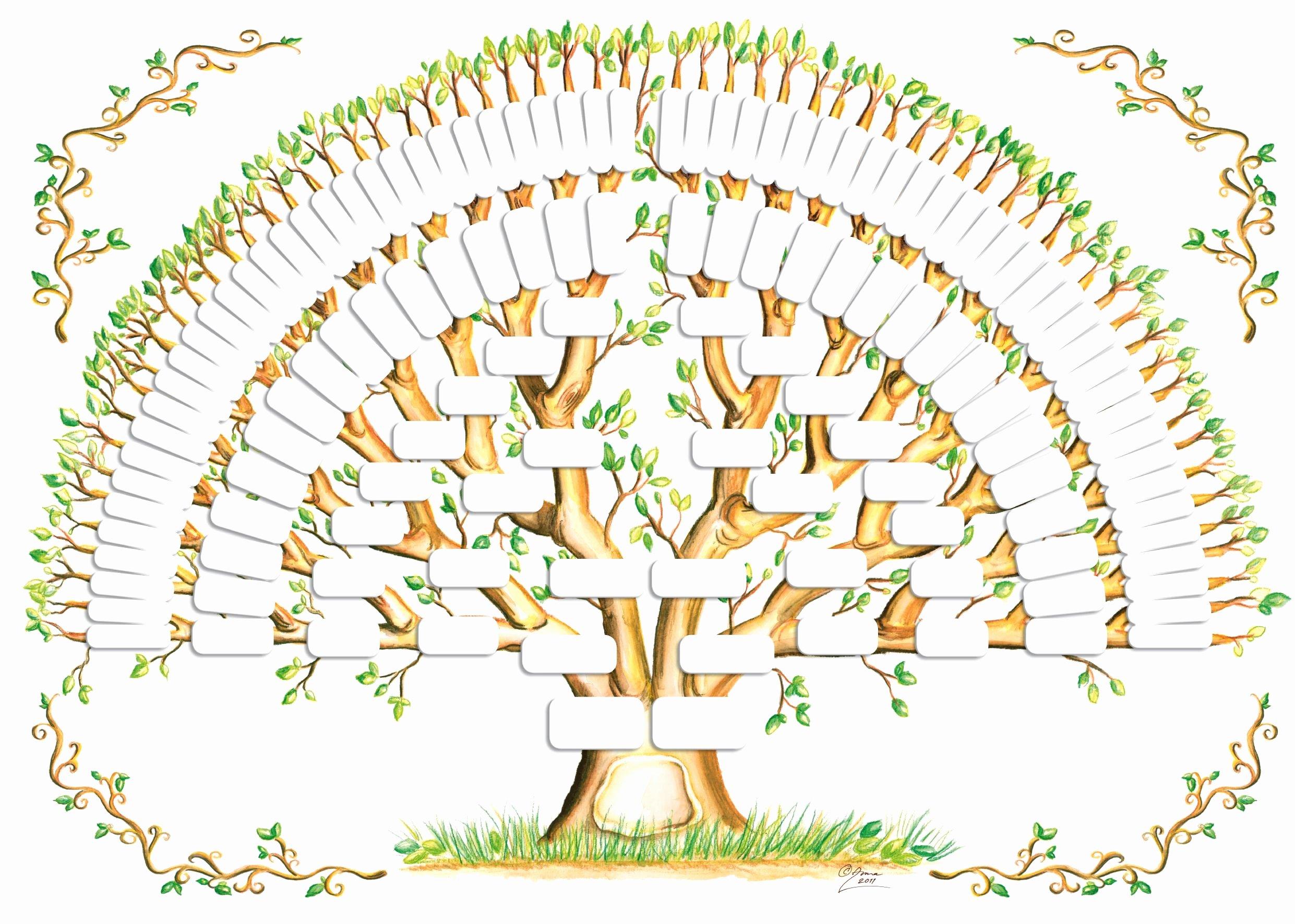 Blank Family Tree Poster Fresh 5 Generation Family Tree Template Tree Gallery