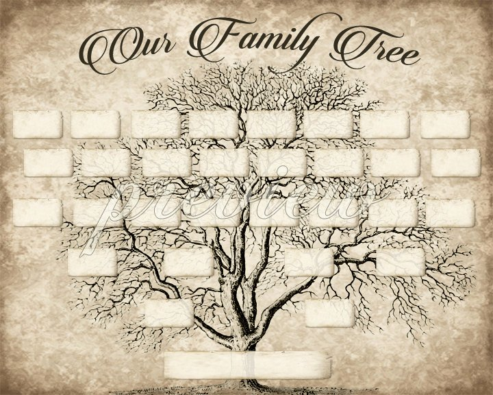 Blank Family Tree Poster Inspirational Custom Family Tree Printable 5 Generation Template Instant