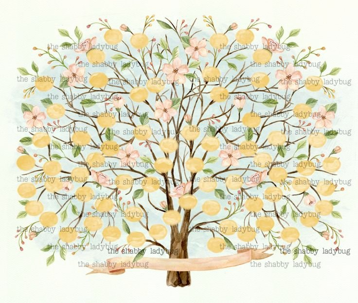 Blank Family Tree Poster Unique 17 Best Ideas About Blank Family Tree On Pinterest