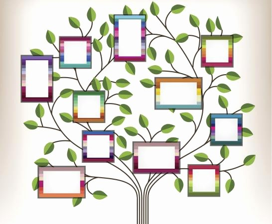 Blank Family Tree Template Awesome Family Tree Template for Kids