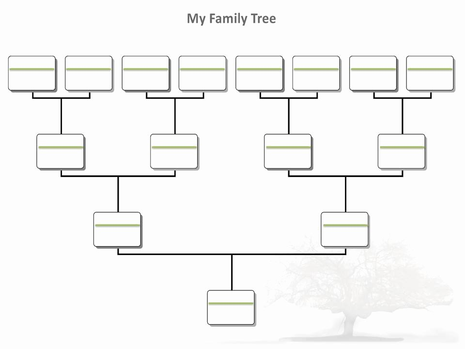Blank Family Tree Template Best Of Blank Family Tree Pdf – Ancestry Talks with Paul Crooks