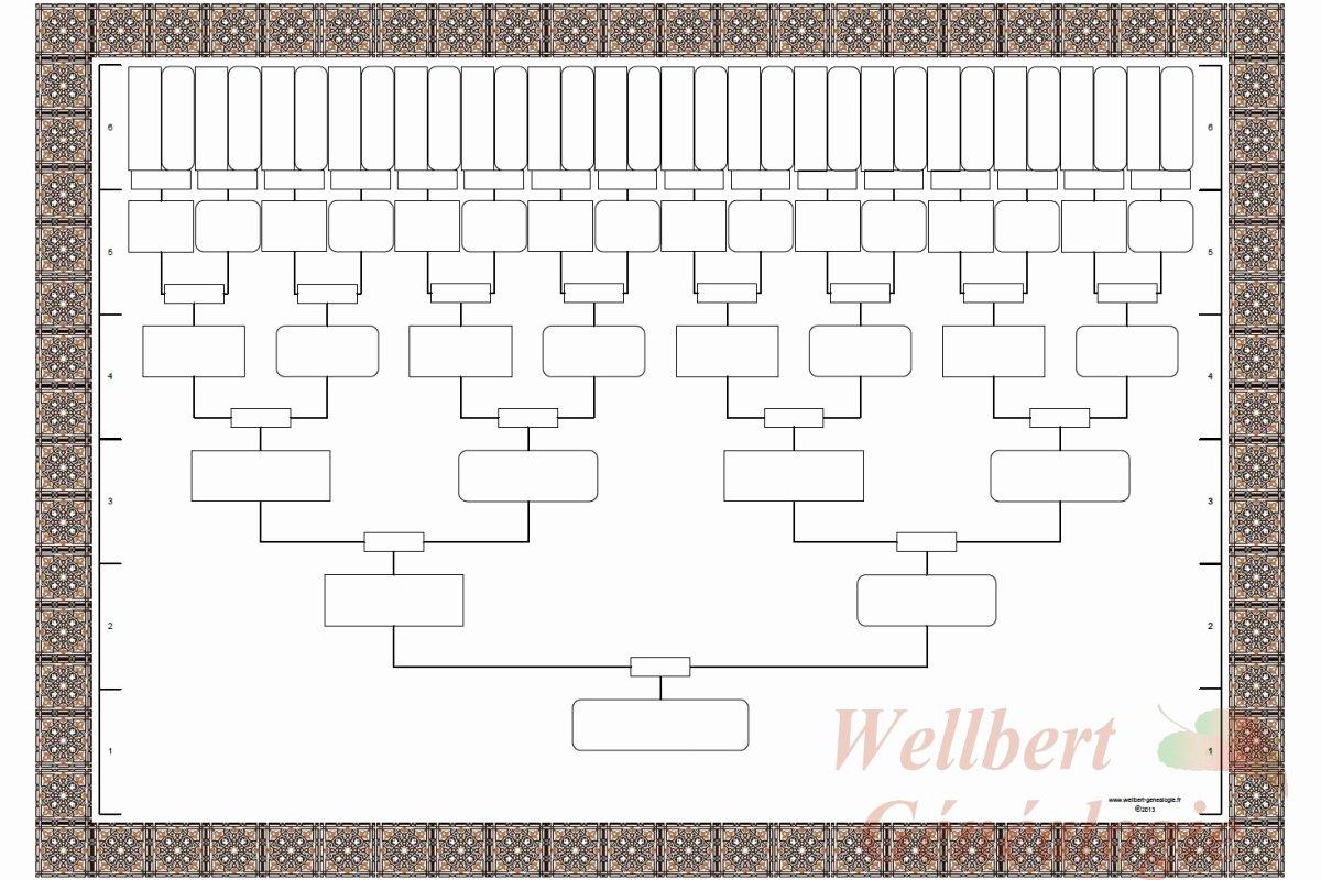 Blank Family Tree Template Elegant Blank Family Tree Template