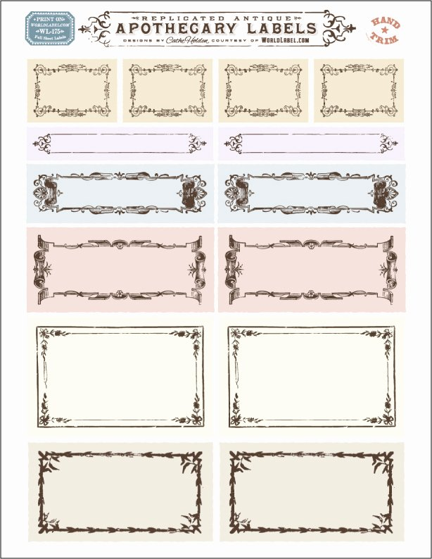 Blank Nutrition Label Template Fresh ornate Apothecary Blank Labels by Cathe Holden