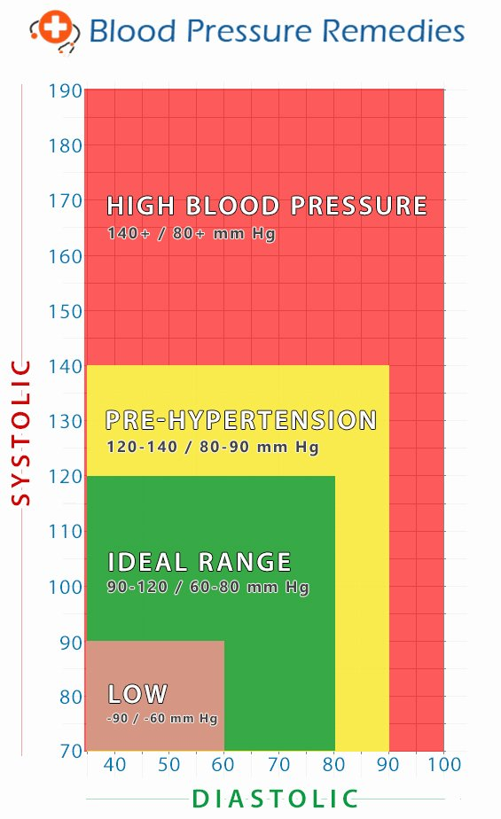 Blood Pressure Chart Awesome Holyland 12 Supplement Blood Pressure Reme S