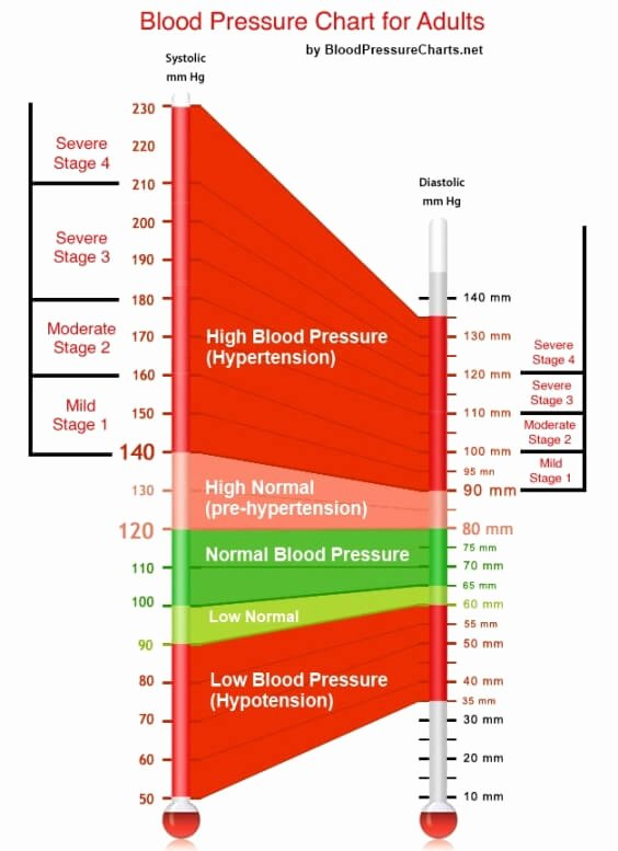 Blood Pressure Chart Inspirational Blood Pressure Chart for Adults