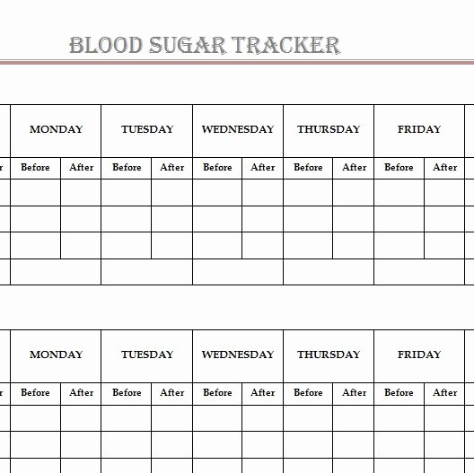 Blood Sugar Tracker Template Luxury Blood Sugar Tracker Template Haven
