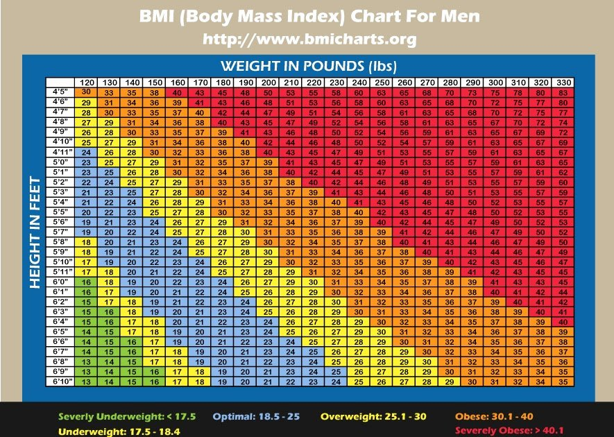 Bmi and Body Fat Chart Best Of Riding