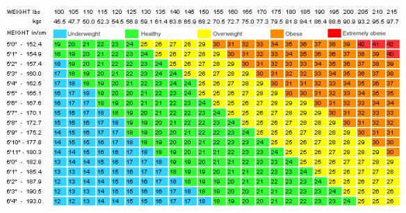 Bmi and Body Fat Chart Elegant Bmi Chart