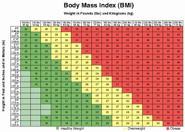 Bmi and Body Fat Chart Inspirational Bmi Chart why It S A Bad Idea to Trust It