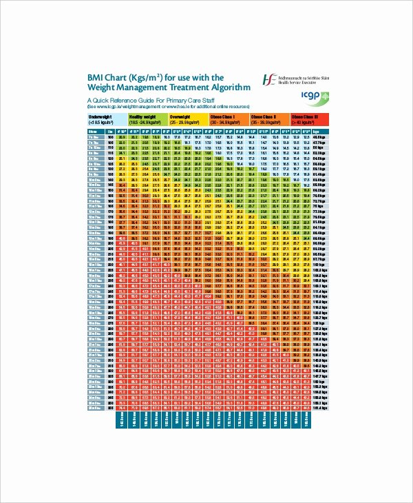 Bmi and Body Fat Chart Luxury 7 Bmi and Body Fat Chart Templates Free Sample Example