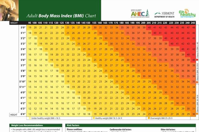 Bmi and Body Fat Chart New 7 Sample Bmi and Body Fat Charts Free Download