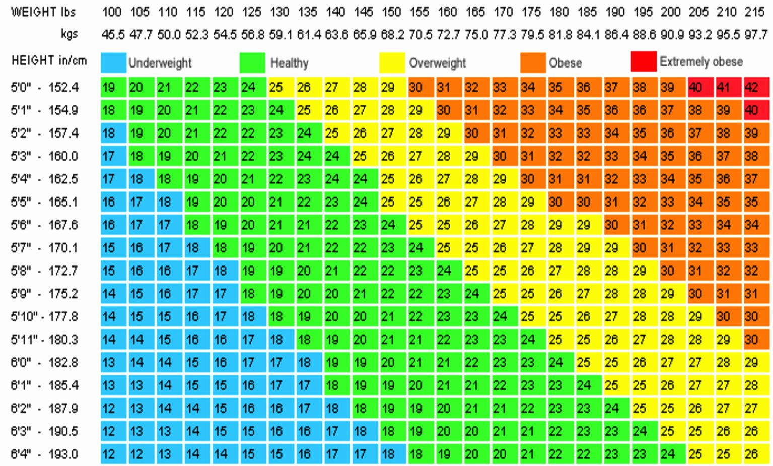 Bmi and Body Fat Chart New Paula tooths