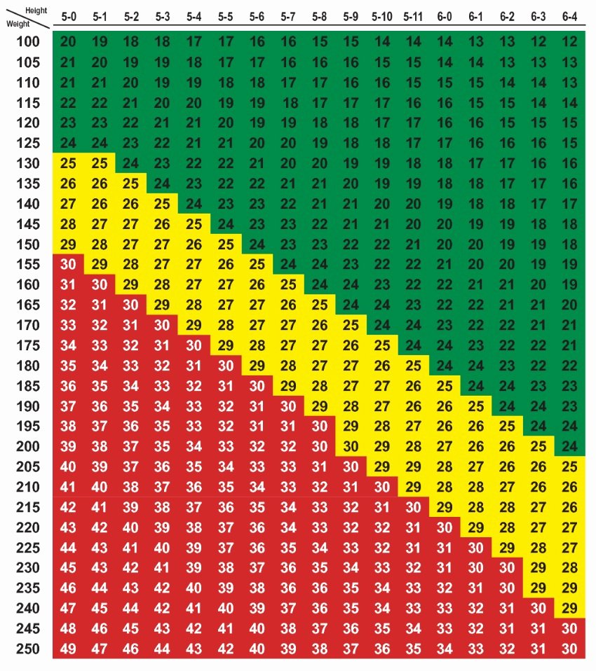 Bmi and Body Fat Chart Unique Does This Chart Make Me Look Fat